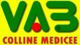 VAB Colline medicee