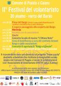 Festa del Volontariato 2015