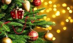 Natale generica
