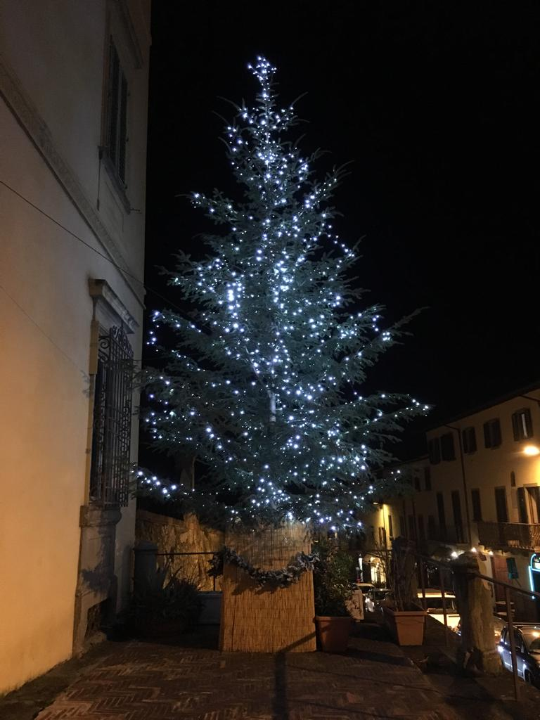Albero Natale 2018